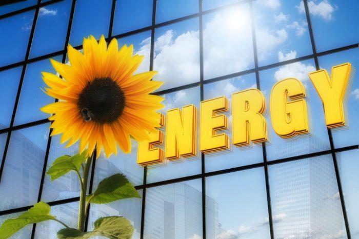 TSL Renewable Energy Industry